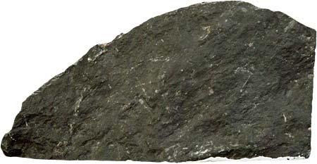 Камень Аргиллит